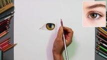 사실적인 눈 그리기! _02.실전(Realistic Eye Drawing! _02. Finally Eye Drawing) [Drawing Hands]