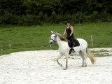 Galop c'était bien parti equitation