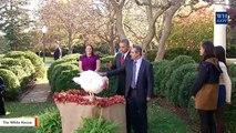 Watch 5 Past U.S. Presidents Pardon Thanksgiving Turkeys
