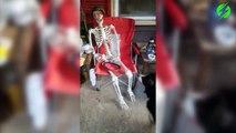 Ce chien veut jouer à la balle avec un squelette d'Halloween... Va chercher!