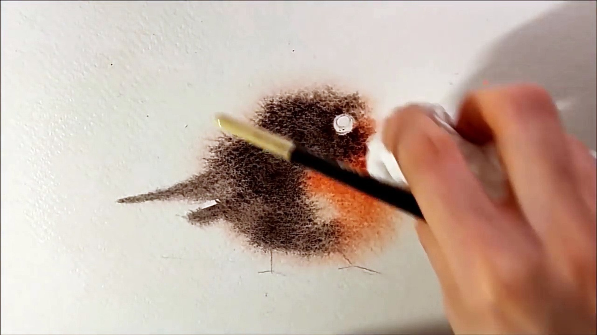 Explained Real Time Watercolor Illustration Fuzzy Bird Painting by Iraville
