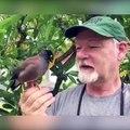 Ce homme et son oiseau chantent ensemble.. Duo adorable