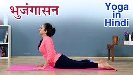 भुजंगासन कैसे करे   Bhujangasan Yoga In Hindi   योग आसन   Yoga In Hindi   भुजंगासन करनेका सही तरीका
