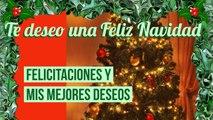 Villancico Feliz Navidad A Todos.Navidad Navidad Feliz Navidad Y Ano Nuevo Villancico