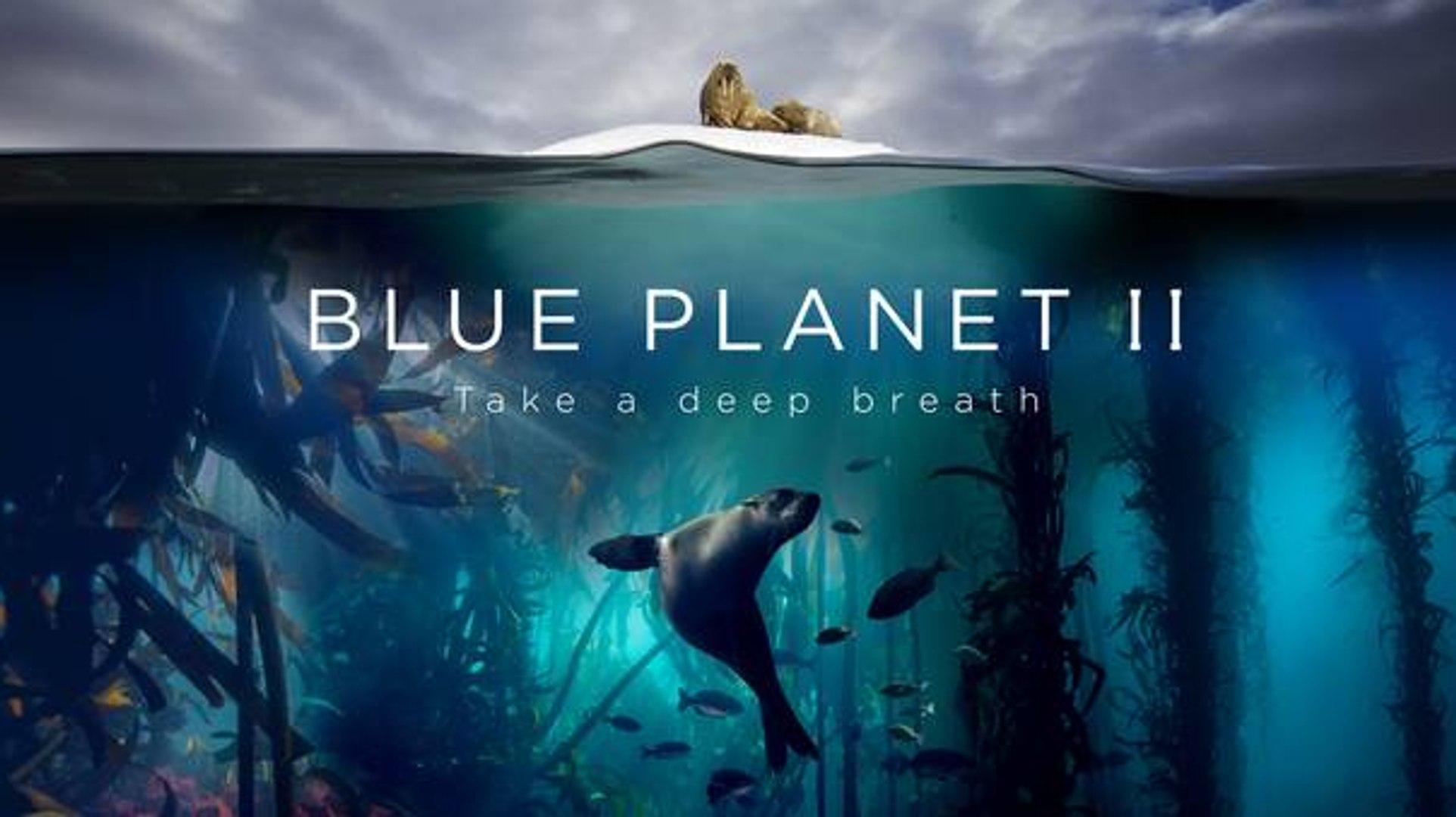 ((S1E07)) Blue Planet II Season 1 Episode 1-7 | BBC One | Documentary