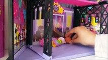 Miniş Vitrini Vlogu (10+ MİNİŞ EVİ) | LPSEM miniş videoları - Littlest pet shop