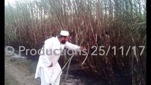 Fireworks in fields by wapda in khanpur - Danger Productions Network