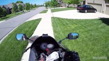 Moto Monday Extra - Dog Gone #2-ncaJbSCsdtw