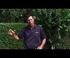 Golf Tips  Golf Tips for Better Iron Shots & Control