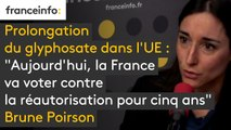 """Prolongation du glyphosate dans l'UE : """"Aujourd'hui, la France va voter contre la réautorisation pour cinq ans"""" , annonce Brune Poirson"""