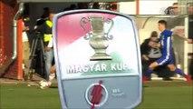 0-1 Ulysse Diallo Goal Hungary  Magyar Kupa  Round 3 - 28.11.2017 Kisvárda FC 0-1 Puskás Akadémia