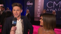 Niall Horan Clears Up Rap Battle With Louis Tomlinson