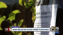 Valley neighborhood on edge after two dogs were poisoned