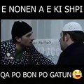 Humor shqip stupcat