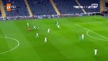 Hasan Ali Kaldirim Goal HD - Fenerbahce3-0Adana Demirspor 29.11.2017