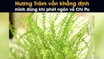 Hương Tràm vẫn khẳng định mình đúng khi phát ngôn về Chi Pu