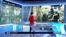 Sapins de Noël : zoom sur une pépinière du Morvan