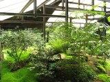 Vincennes-Parc Floral (2)