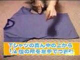 L'art de plier son tee shirt