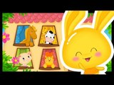 Comptine des animaux pour bébés - Dans ma maison - chanson des animaux -Titounis
