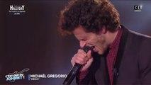TPMP : L'hommage de Michaël Gregorio à Johnny Hallyday