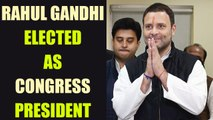 Rahul Gandhi takes over as Congress President, replaces his mother Sonia Gandhi | Oneindia News