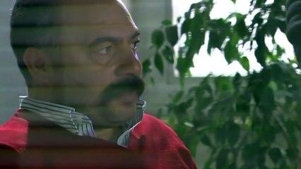 Maya Zaman İstiyor! - Adanalı 77.Bölüm