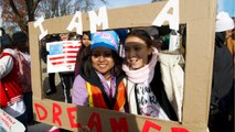 Senate Moves To Save DREAMERs