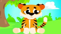 Where Are My Tiger Paws   Can You Help Baby Tiger Find His Paws❓ Tiger Stripes by Little Angel-Ty1Dcs81tWo