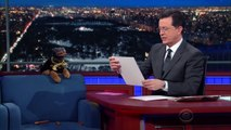 Triumph The Insult Comic Dog Is Now An Incisive-Political-Humor Dog-vxbHD1VBgtE