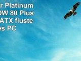 SilverStone SSTST1000PT  Strider Platinum Serie 1000W 80 Plus Platinum ATX