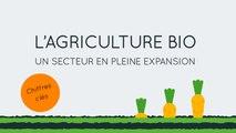 L'agriculture bio, un secteur en plein expansion en France !