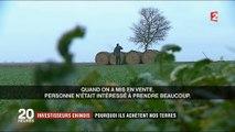 Les investisseurs chinois à l'assaut des terres agricoles françaises