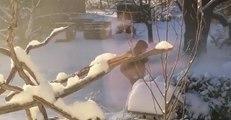 Heavy Snow Blankets Parts of Ontario