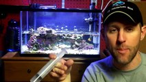 10 gallon Reef Tank - Water Changes and Maintenance Tips. Saltwater Aquarium Tips, No Skimmer-UOpjtvpPLhs