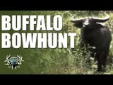 Headhunter Chronicles - Bow hunting in Australia and Papua New Guinea