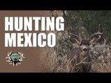 Headhunter Chronicles - Mexico