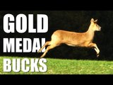 Gold Medal Bucks with Kristoffer Clausen