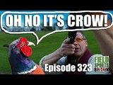 Fieldsports Britain - Fast Pheasants with Andy Crow