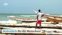 Wie Naturschutz Menschen rettet | DW Deutsch