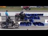 Suzuki Hayabusa vs Harley Davidson, carrera de motos, piques de motos, motos deportivas, drag race