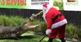 Santa Claus Feeds Feisty Crocodiles at Australian Reptile Park