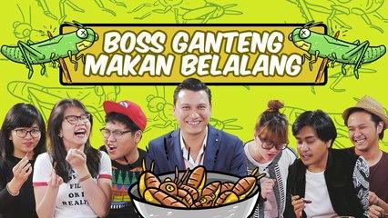 Boss Ganteng Doyan Makan Belalang!