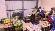 Première mondiale en France: des huîtres parfumées