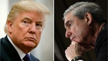 Trump Expects Mueller to Write a Letter Exonerating Him in the Russian Probe