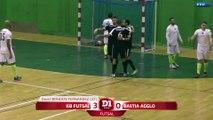 D1 Futsal, journée 14 : Tous les buts I FFF 2017