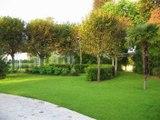 Agence Aménagement Espaces Verts paysagiste conseil conception, création à Châtillon