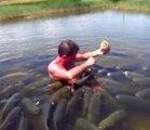 Plongé dans l'eau, il nourrit des centaines de poissons. Expérience incroyable
