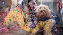 Cette maman dépense plus de 1000 dollars de cadeaux de Noël pour son chien
