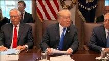 Grünes Licht für Trumps Steuerreform